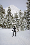 Cross Country skiing at Haggin Mountain Ski Area near Anaconda, Montana with Haggin Mountain in the distance
