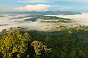 Lowland dipterocarp rainforest at dawn. Danum Valley, Sabah, Borneo, Malaysia.