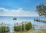 Italy, Veneto, Lake Garda, near Garda, Punta San Vigilio: headland with Locanda San Vigilio and small harbour | Italien, Venetien, Gardasee, bei Garda: Punta San Vigilio, Landzunge mit der Locanda San Vigilio und kleinem Hafen - beliebtes Ausflugsziel auch mit dem Boot