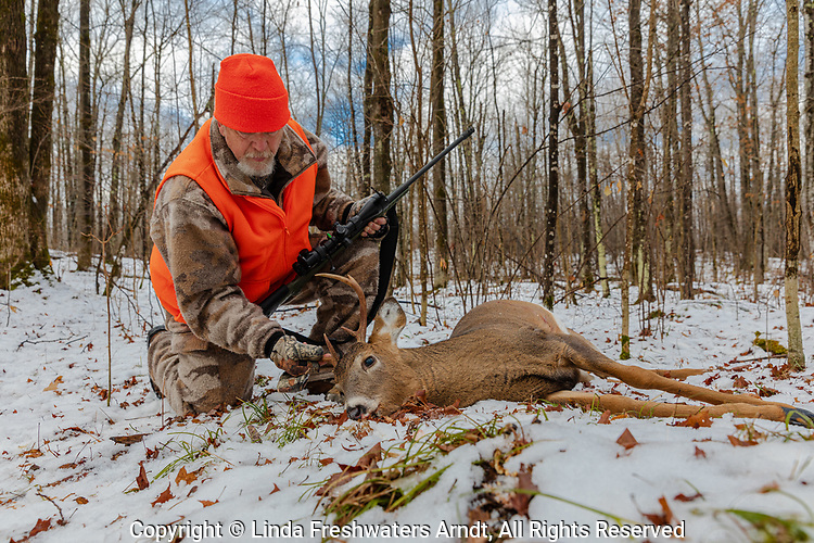 Deer hunter examines his white-tailed buck in northern Wisconsin.