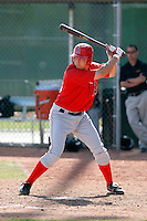 Tyler Mann - Los Angeles Angels - 2009 spring training.Photo by:  Bill Mitchell/Four Seam Images