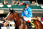18 October 2009: Number 6 Get Stormy, ridden by Javier Castellano and trained by Thomas Bush poses for photos after winning the 9th running of the Bryan Station Grade III Stake at Keeneland in Lexington, Kentucky.