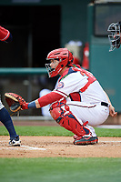 Harrisburg Senators catcher Taylor Gushue (36) waits to receive a pitch during the first game of a doubleheader against the New Hampshire Fisher Cats on May 13, 2018 at FNB Field in Harrisburg, Pennsylvania.  New Hampshire defeated Harrisburg 6-1.  (Mike Janes/Four Seam Images)