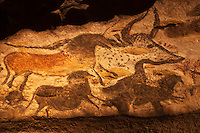 Europe/France/Aquitaine/24/Dordogne/Périgord Noir/Montignac: Grotte de Lascaux II - Grottes ornée  paléolithique - Chevaux [Non destiné à un usage publicitaire - Not intended for an advertising use]