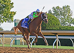 October 4, 2019: British Idiom, trained by Brad Cox, wins the Alcibiades Stakes (G1) at Keeneland on October 4 2019 in Lexington, KY. Jessica Morgan/ESW/CSM