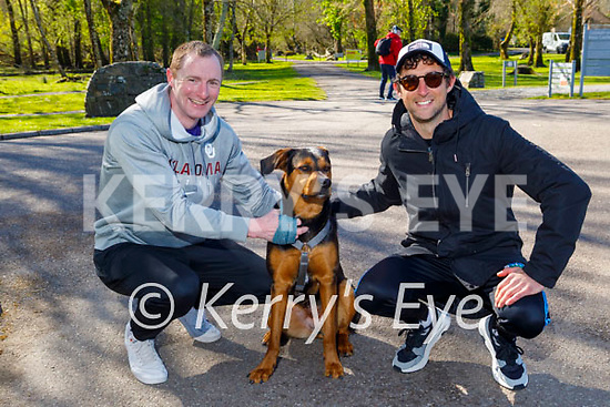 Taking Zena the dog for a walk at Ross Castle on Saturday morning were Andrew O'Connell and Shane O'Sullivan.