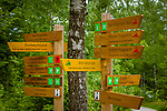 Deutschland, Bayern, Niederbayern, Nationalpark Bayerischer Wald, Neuschoenau: gut ausgeschilderte Wege laden zum Wandern ein | Germany, Bavaria, Lower-Bavaria, National Park Bavarian Forest, Neuschoenau: well signposted hiking trails