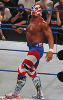 Hulk Hogan 2003                                                                     By John Barrett/PHOTOlink