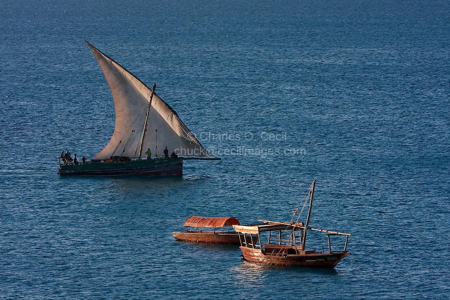 Zanzibar, Tanzania.  Dhow in Harbor, Lateen Sail.