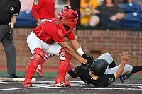Johnson City Cardinals catcher Aaron Antonini (53) attempts to tag  Aaron Shackelford (13) as he slides in safely during game two of the Appalachian League, West Division Playoffs against the Bristol Pirates at TVA Credit Union Ballpark on August 31, 2019 in Johnson City, Tennessee. The Cardinals defeated the Pirates 7-4 to even the series at 1-1. (Tony Farlow/Four Seam Images)