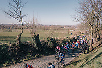 Peloton racing up the legendary Oude Kwaremont for the very first time this season. Come next april (in De Ronde van Vlaanderen) and the trees wil have leaves & the whole environment changes drasticly with thousands of fans lining this climb.<br /> <br /> 70th Kuurne-Brussel-Kuurne 2018<br /> Kuurne › Kuurne: 200km (BELGIUM)