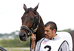 September 21, 2013.  Pennsylvania Derby contender Speak Logistics, trained by Edward Plesa, Jr.. Will Take Charge, trained by D. Wayne Lukas and ridden by Luis Saez, wins the Pennsylvania Derby at  Parx Racing, Bensalem, PA.  ©Joan Fairman Kanes/Eclipse Sportswire