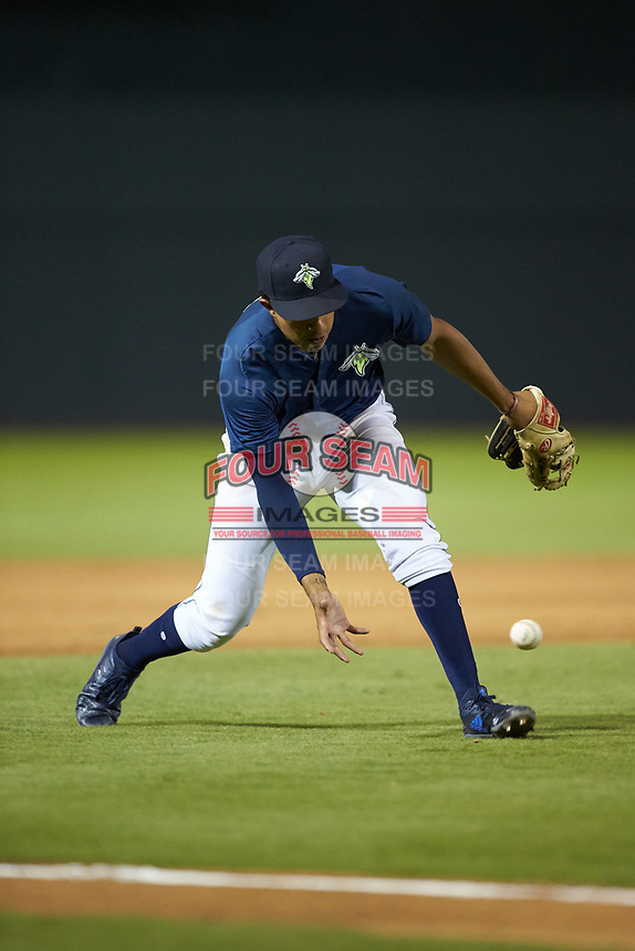 Columbia Fireflies third baseman Mark Vientos (13) fields a ground ball during the game against the Rome Braves at Segra Park on May 13, 2019 in Columbia, South Carolina. The Fireflies defeated the Braves 6-1 in game two of a doubleheader. (Brian Westerholt/Four Seam Images)