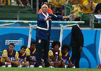 Brazil head coach Luiz Felipe Scolari gestures on the touchline