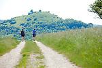 Europa, DEU, Deutschland, Baden-Wuerttemberg, Schwaebische Alb, Landkreis Esslingen, Wanderer, Typische Landschaft, Natur, Umwelt, Landschaft, Jahreszeiten, Stimmungen, Landschaftsfotografie, Landschaften, Landschaftsphoto, Landschaftsphotographie, <br /> <br /> [Fuer die Nutzung gelten die jeweils gueltigen Allgemeinen Liefer-und Geschaeftsbedingungen. Nutzung nur gegen Verwendungsmeldung und Nachweis. Download der AGB unter http://www.image-box.com oder werden auf Anfrage zugesendet. Freigabe ist vorher erforderlich. Jede Nutzung des Fotos ist honorarpflichtig gemaess derzeit gueltiger MFM Liste - Kontakt, Uwe Schmid-Fotografie, Duisburg, Tel. (+49).2065.677997, ..archiv@image-box.com, www.image-box.com]
