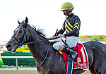 September 18, 2021: Tango Tango Tango  #1, ridden by jockey Flavien Prat in the post parade for the Jockey Club Derby Invitational Stakes on the turf at Belmont Park in Elmont, N.Y. on September 18th, 2021. Dan Heary/Eclipse Sportswire/CSM
