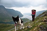 Dame med hund på vei opp bakkene fra Jøfjorden på Seiland i Finnmark. ---- Woman and dog hiking in steep terrain on the island Seiland.