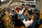 A fisheye view of the tournament area.