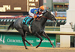 Gulfport and Corey Lanerie win the 10th race at Churchill Downs.  November 24, 2012.