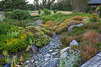 Rocky dry gravel drainage swale in Dry Stream Bed, Soest Herbaceous Display Garden, University of Washington Botanic Garden, Center for Urban Horticulture, Seattle