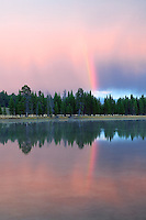 Rainbow reflected in Yellowstone River and rain. Yellowstone National Park, Wyoming.
