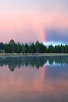 Rainbow reflected in Yellowstone River and rain. Yellowstone National Park, Wyoming.