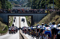 peloton on their way to Leuven<br /> <br /> Women Elite - Road Race (WC)<br /> from Antwerp to Leuven (158km)<br /> <br /> UCI Road World Championships - Flanders Belgium 2021<br /> <br /> ©kramon