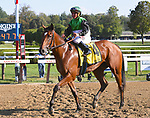 Proctor's Ledge (no. 4), ridden by Javier Castellano and trained by Brendan Walsh, wins the 34th running of the grade 2 Lake Placid Stakes for three year old fillies on August 19, 2017 at Saratoga Race Course in Saratoga Springs, New York. (Bob Mayberger/Eclipse Sportswire)