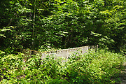 The site of the schoolhouse at the abandoned village of Livermore. This was a logging village in the late 19th and early 20th centuries along the Sawyer River Logging Railroad in Livermore, New Hampshire USA.