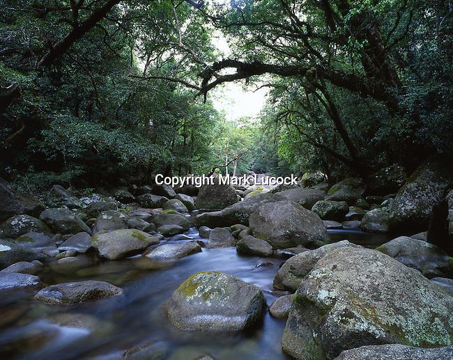 Mossman River Cascade, Daintree National Park, Queensland
