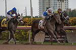 Vinceremos(3) and jockey Edgar Prado hold off I'mbetterthangood(2) and Manuel Cruz to win a 1 mile maiden allowance race at Gulfstream Park. Hallandale Beach, Florida 01-04-2014