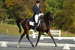 Marilyn Little-Meredith(USA)  aboard RF Rovano Rex competing in dressage during day one  Fair Hill International in Fair Hill, MD  on 10/14/11.  (Ryan Lasek / Eclipse Sportwire)