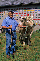 "Europe/France/Auvergne/43/Haute-Loire/Env. Les Estables : ""La Ferme de Jean"" - Mr Etienne Exbrayat et son boeuf fin gras du Mézenc (Riesling charolais de 3 ans et 900 kg) [Non destiné à un usage publicitaire - Not intended for an advertising use]"