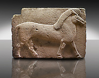 Picture of Phrygian releif sculpture Orthostat of a horse from Kucukevier, Ankara, Turkey. Museum of Anatolian Civilisations, Ankara. 7th century BC. Note the stylised leg muscels. 2