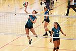 Volleyball, 14 September