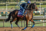 ARCADIA, CA  OCTOBER 30: Breeders' Cup Filly & Mare Turf entrant Magical, trained by Aidan P. O'Brien, , exercises in preparation for the Breeders' Cup World Championships at Santa Anita Park in Arcadia, California on October 30, 2019.  (Photo by Casey Phillips/Eclipse Sportswire/CSM)