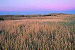 Theodore Roosevelt National Park, ND<br /> Grasses under twilight sky Little Missouri National Grasslands