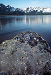 Large ice chunk, Glacier Bay National Park and Preserve, Alaska