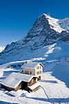 CHE, Schweiz, Kanton Bern, Berner Oberland, Grindelwald: Kleine Scheidegg - Almhaus + Almhuette vorm Eiger (3.970 m) | CHE, Switzerland, Canton Bern, Bernese Oberland, Grindelwald: Kleine Scheidegg - alpine pasture hut + house with Eiger mountain
