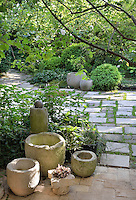 A well-stocked, lush garden with a paved path leading through the plants on either side. The various flowers and shrubs, provide a contrasting variety of leaf shapes, textures and greens. A group of stone pots stands on the paving.