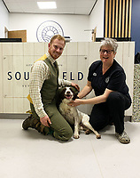 BNPS.co.uk (01202 558833)<br /> Pic: Medivet/BNPS<br /> <br /> The relieved Bevins family with Brook and Vet Verity Griffiths.<br /> <br /> A pet dog had to undergo life-saving surgery after it swallowed a 9 inch long stick whole.<br /> <br /> Brook, a four-year-old spaniel, somehow ate the stick during a country walk with owner Tom Bevins.<br /> <br /> He collapsed a few minutes later and Mr Bevins rushed the pet to the vets.<br /> <br /> An X-ray revealed the sharp stick, that was still in one piece, lodged in Brook's stomach.