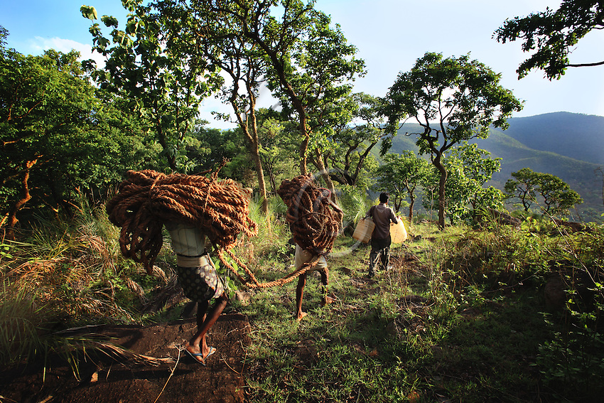 The honey hunters team is walking in the jungle with the rope to the cliff.