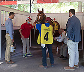 9th Curlin Stakes - Dynamic One