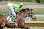 A. U. Miner Ridden by Calvin Borel  in last pace through the first turn takes dirt to the face during The Greenwood Cup Handicap Marathon Breeders Cup Challenge Race  at  Parx in Bensalem, Pennsylvania on July 16, 2011. (Ryan Lasek / Eclipse Sportwire)