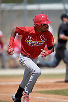 St. Louis Cardinals Delvin Perez (7) runs to first base during a minor league Spring Training game against the Washington Nationals on March 27, 2017 at the Roger Dean Stadium Complex in Jupiter, Florida.  (Mike Janes/Four Seam Images)