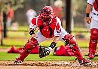 22 February 2019: Washington Nationals catcher Spencer Kieboom takes drills at home plate during a Spring Training workout at the Ballpark of the Palm Beaches in West Palm Beach, Florida. Mandatory Credit: Ed Wolfstein Photo *** RAW (NEF) Image File Available ***