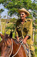 Older cowboys riding horses collecting cows in farmland country near Havana in Havana Providence Habana