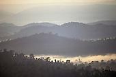 Serra dos Carajas, Para, Brazil. Misty rainforest in the dawn light.