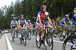 The peloton including Rabobank's Laurens Ten Dam (NED)climbs the Cote de Francorchamps during Stage 1 of the 99th edition of the Tour de France, running 198km from Liege to Seraing, Belgium. 1st July 2012.<br /> (Photo by Eoin Clarke/NEWSFILE)