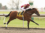 09 April 2011.  Higher Court and Kent Desormeaux win the fifth race at Keeneland.   Higher Court is the first winner for European sire, Shamardal.